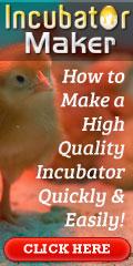 Incubator Maker