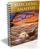 Hatching Analysis